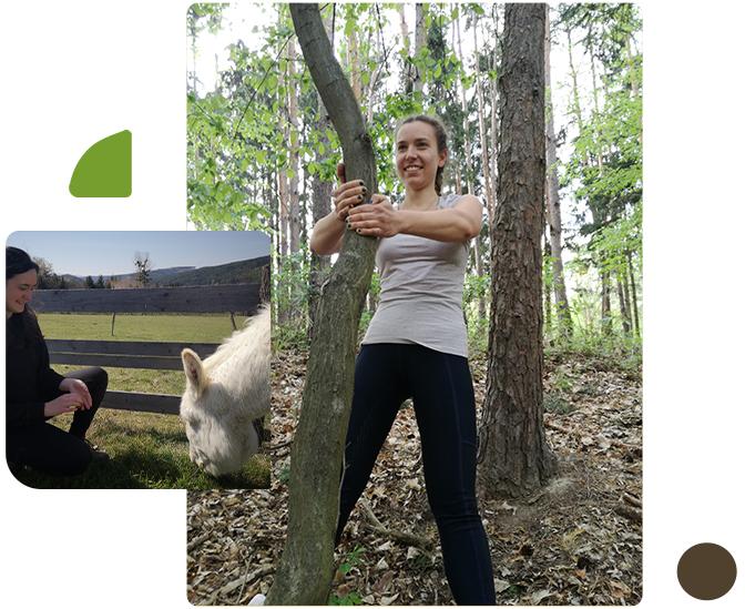 Sportübung mit Hilfe von Baum